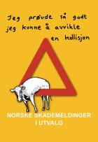 Norske skademeldinger i utvalg