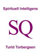 Spirituell Intelligens SQ