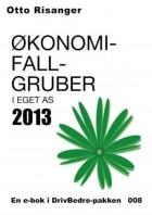 Økonomifallgruber i eget AS 2013