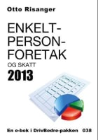 Enkeltpersonforetak og skatt 2013
