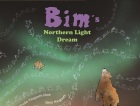 Bim's northern light dream