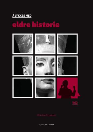 Å lykkes med eldre historie