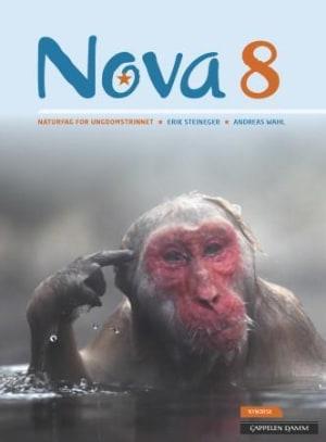 Nova 8