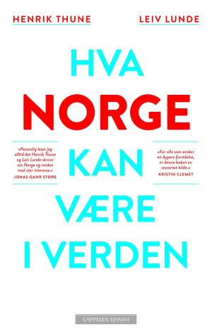 Hva Norge kan være i verden