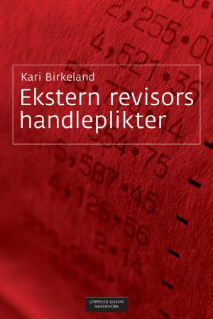 9788202528034 - Ekstern revisors handleplikter - Bok