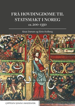 Frå høvdingdøme til statsmakt i Noreg