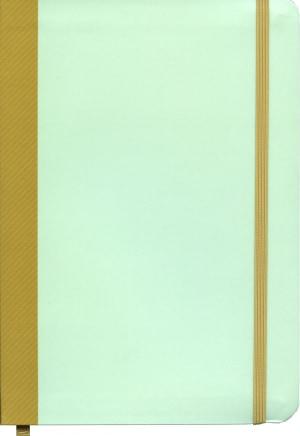 Punktjournal notatbok
