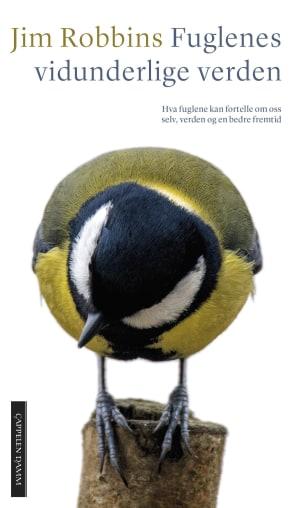 Fuglenes vidunderlige verden