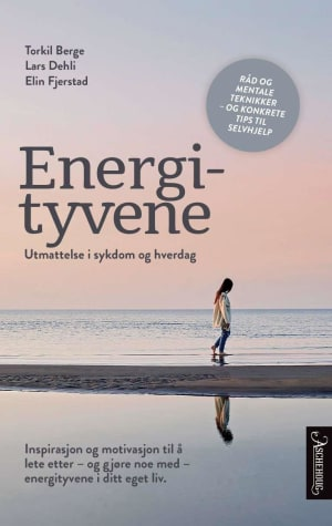 Energityvene