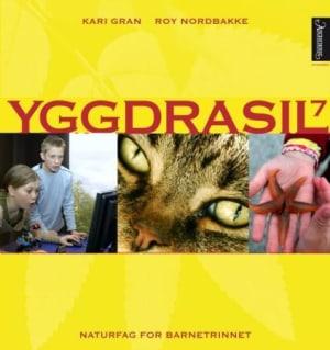 Yggdrasil 7