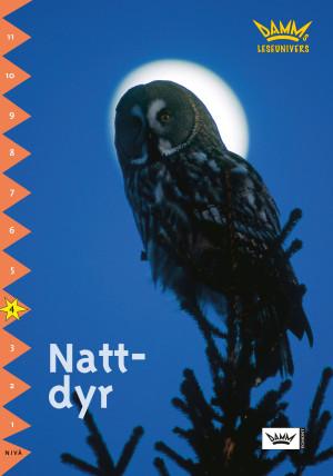 Nattdyr