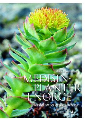 Medisinplanter i Norge