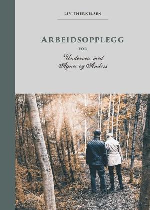 """Arbeidsopplegg for """"Underveis med Agnes og Anders"""""""