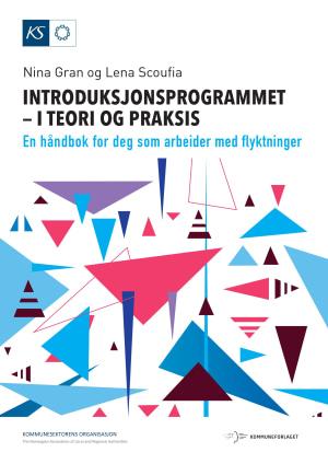 Introduksjonsprogrammet - i teori og praksis