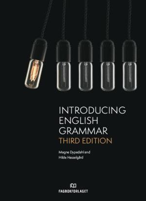 Introducing English Grammar, 3rd Edition