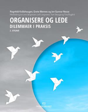 Organisere og lede, 2. utgave