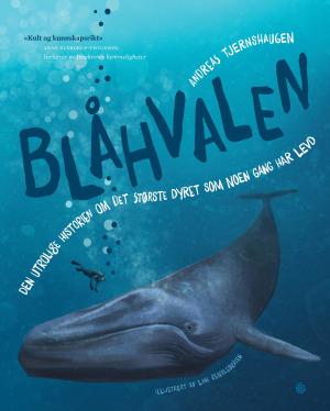 Blåhvalen