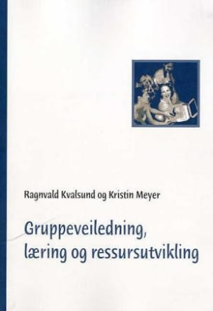 Gruppeveiledning, læring og ressursutvikling
