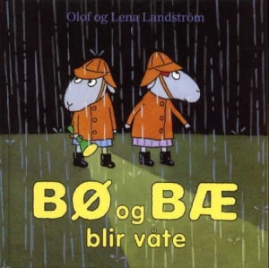 Bø og Bæ blir våte