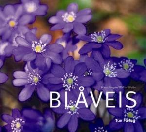 Blåveis