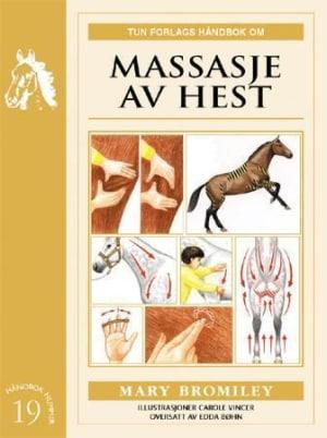 Massasje av hest