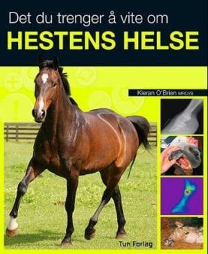 Det du trenger å vite om hestens helse
