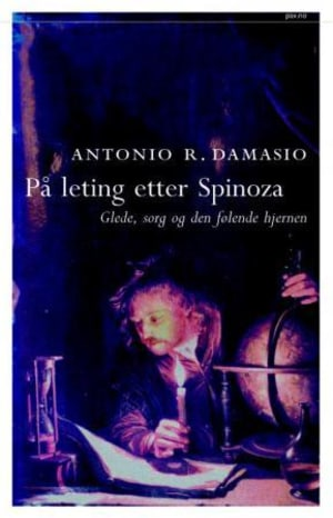 På leting etter Spinoza