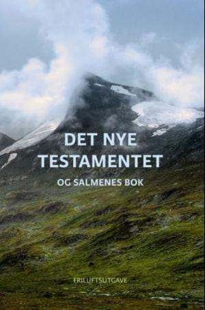 Det nye testamentet og Salmenes bok