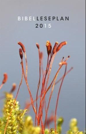 Bibelleseplan 2015