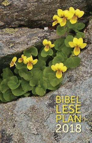 Bibelleseplan 2018