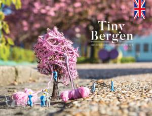 Tiny Bergen