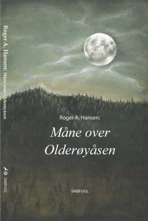 Måne over Olderøyåsen