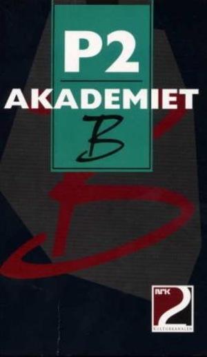 P2-Akademiet B