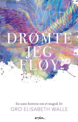 Drømte jeg fløy