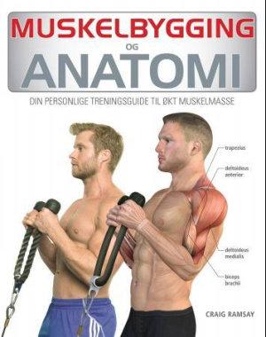 Anatomi og muskelbygging
