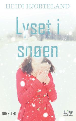 Lyset i snøen