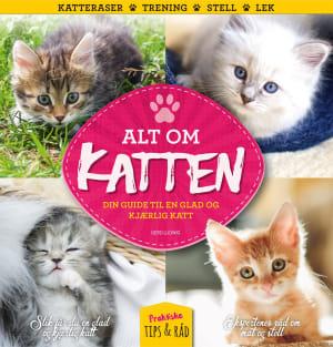 Alt om katten