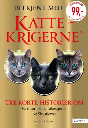 Bli kjent med Kattekrigerne