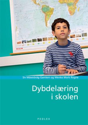 Dybdelæring i skolen