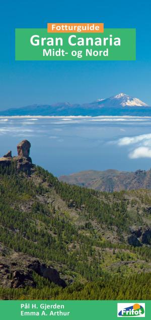 Gran Canaria midt- og nord