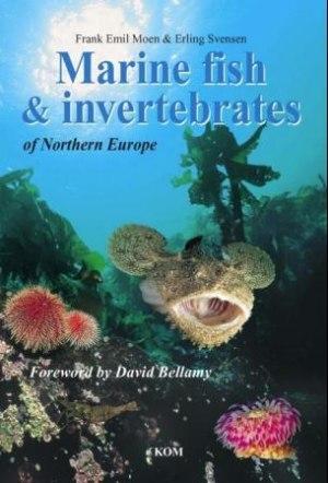 Marine fish and invertebrates of Northern Europe