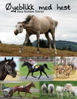 Øyeblikk med hest
