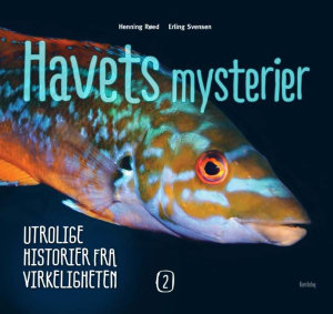 Havets mysterier 2