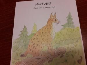 Hviveis