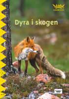 Dyra i skogen