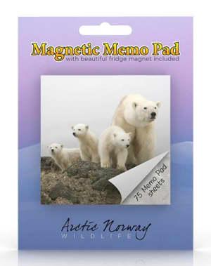 Isbjørn. Magnetisk memoblokk. Arctic Norway wildlife