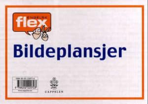 Flex engelsk. 9 bildeplansjer