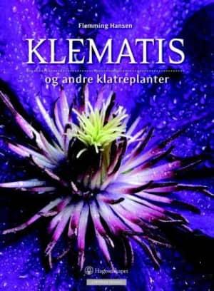 Klematis og andre klatreplanter