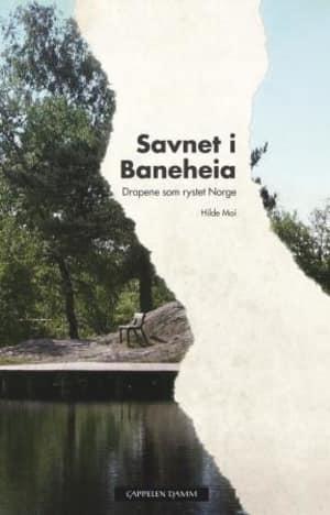 Savnet i Baneheia