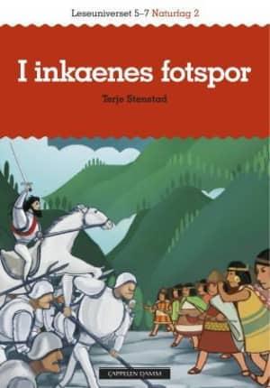 Inkariket